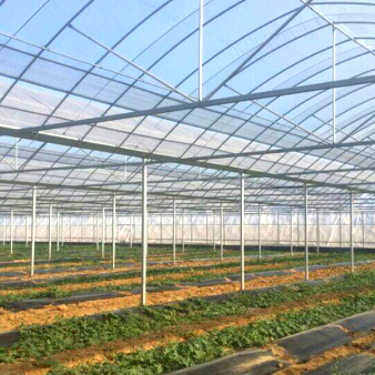 蔬菜温室大棚的建造注意事项