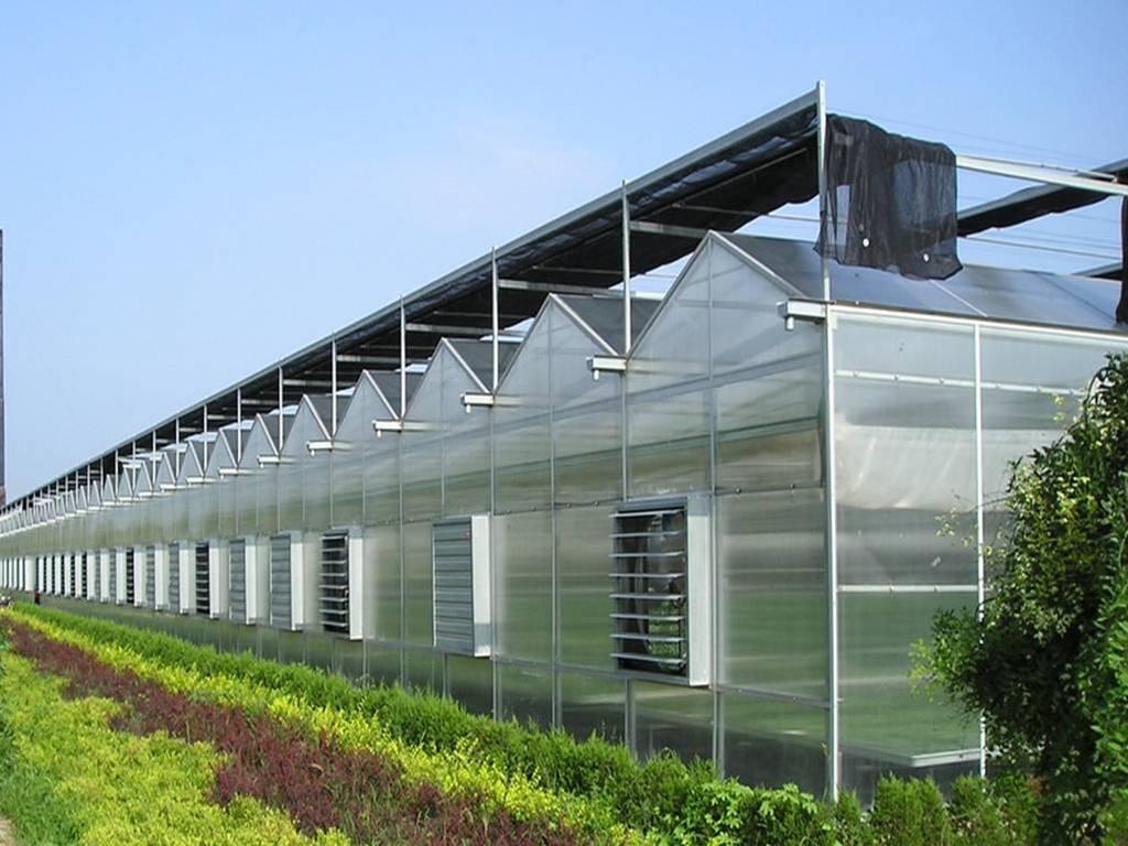 为什么选择建造连栋温室大棚的越来越多了