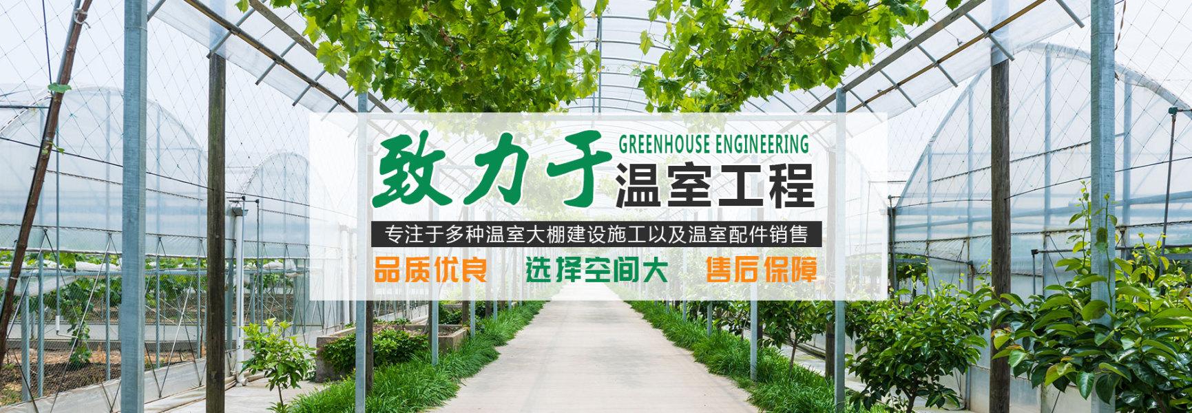山东智能温室建设