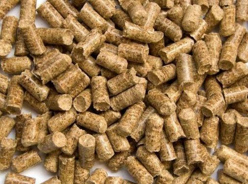 安顺优良的新驱生物饲料哪里有供应-银原饲料经济实惠