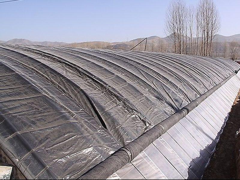 日光温室大棚建造-山东高质量的日光温室大棚