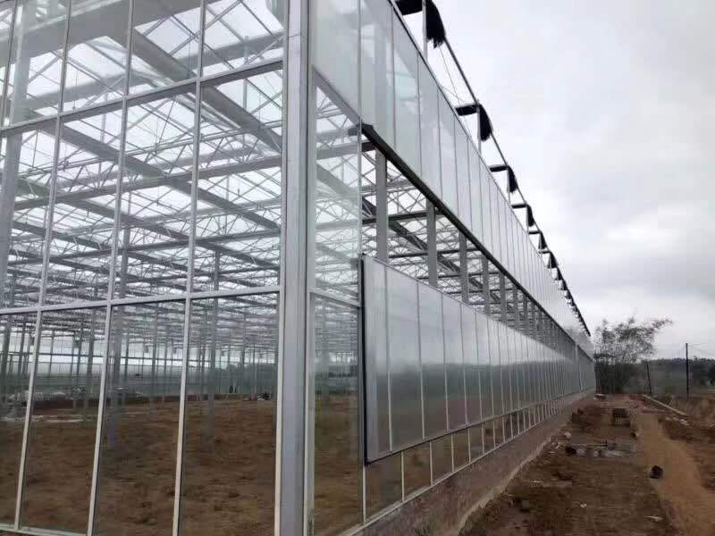 青州市鼎立温室工程有限公司