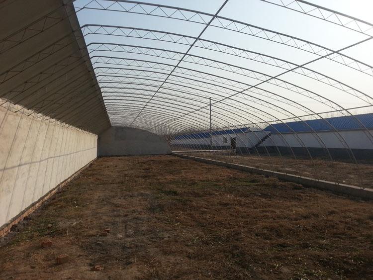 新型日光温室