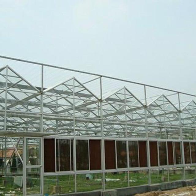 玻璃温室建造