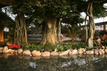西安假树设计