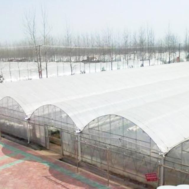 黑龙江养殖大棚承建