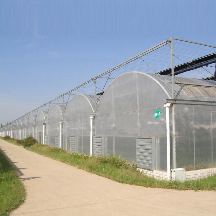 湖北薄膜温室建造商,连栋薄膜温室制造商