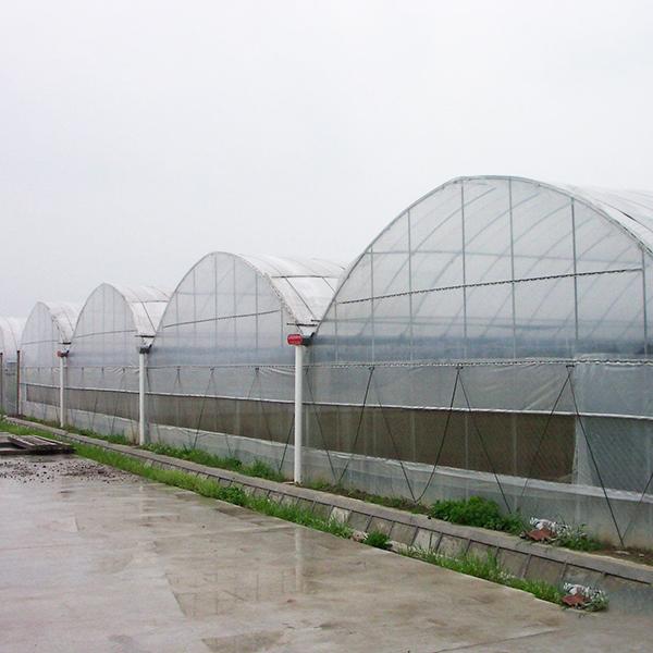 云南连栋温室大棚如何进行防雨
