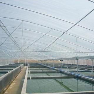 水产养殖温室