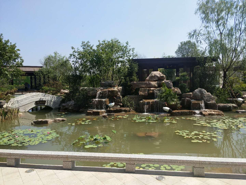 潍坊哪里可以做园林景观绿化-园林景观绿化