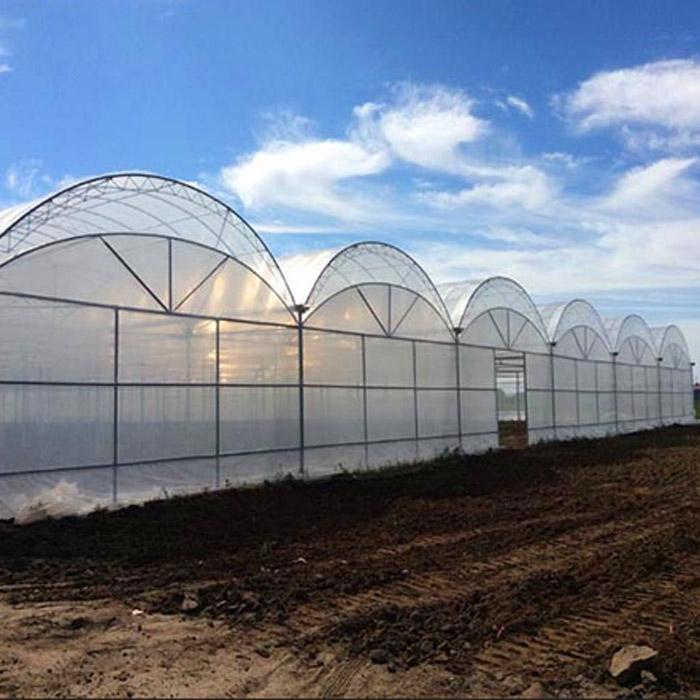 温室工程建设的防雨措施