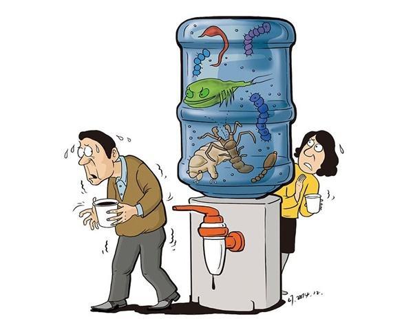 南平不锈钢饮水机为什么可以代替桶装水?