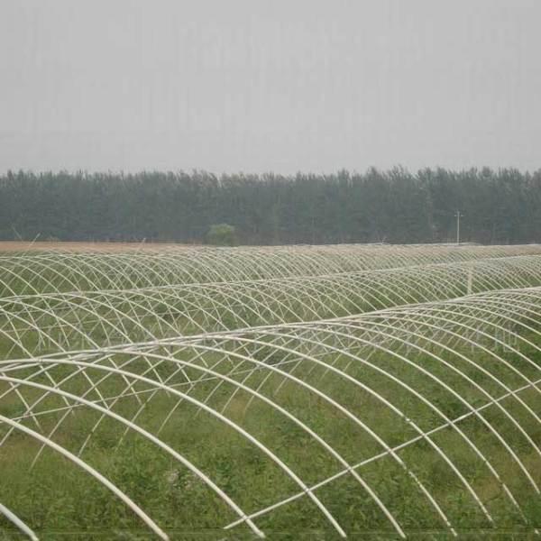 温室种植大棚