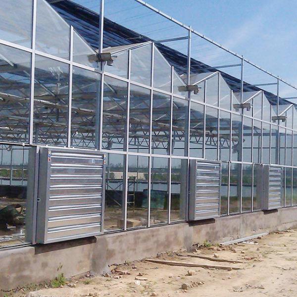 文络型玻璃温室