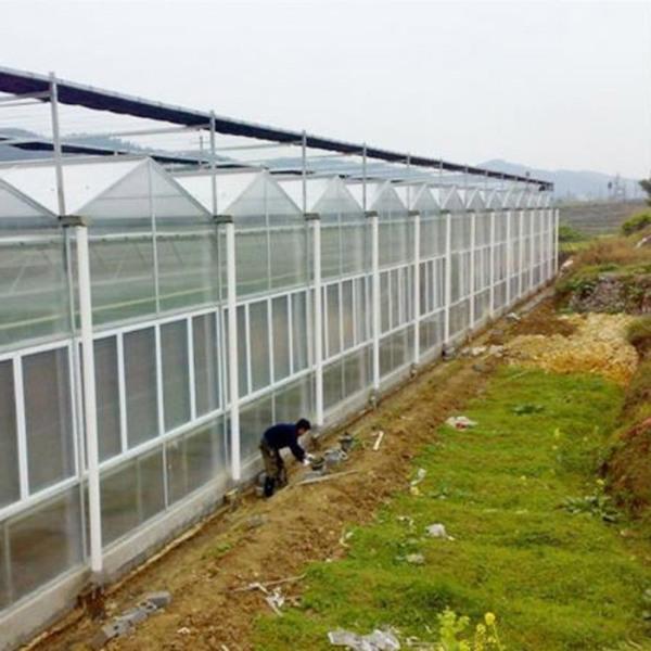 花卉温室建造商