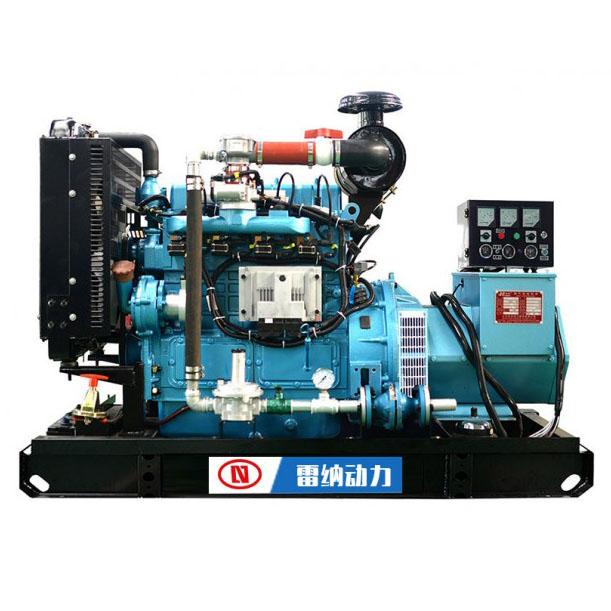 雷纳燃气发电机组
