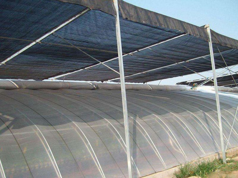 高质量的日光温室大棚建设_日光温室