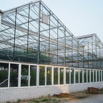 青海玻璃温室