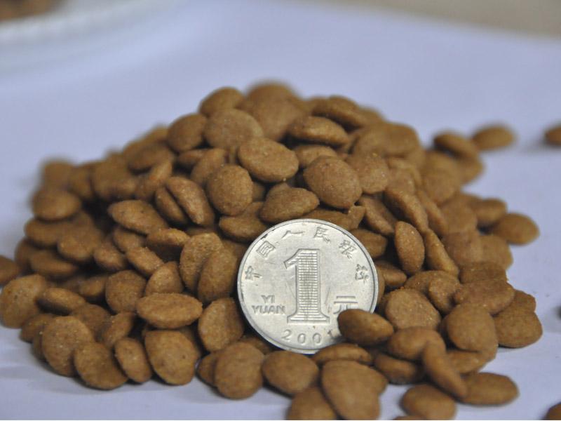 遼寧寵物干糧批發|要買新品寵物糧食,當選漢歐生物科技