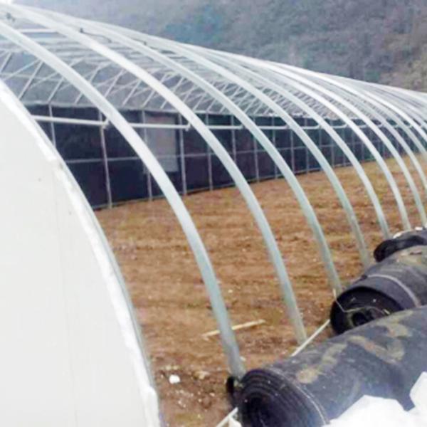 青海养殖大棚浇水时的注意事项