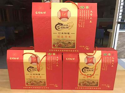 甘肃周元商贸供应品质好的有机大米-广东有机大米