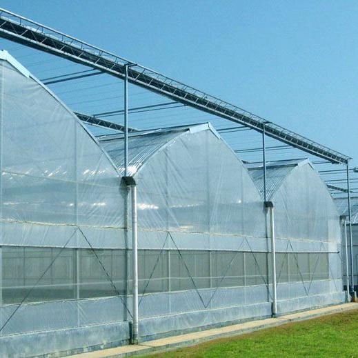 玻璃大棚建设