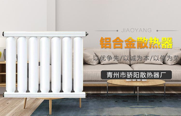 民用铝合金散热器