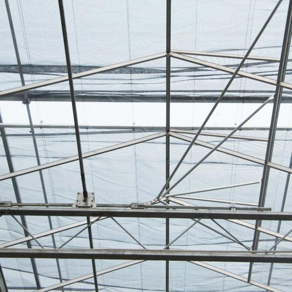 河北阳光板温室