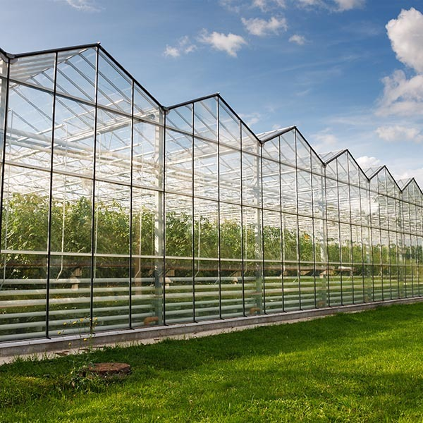 江西玻璃温室承建
