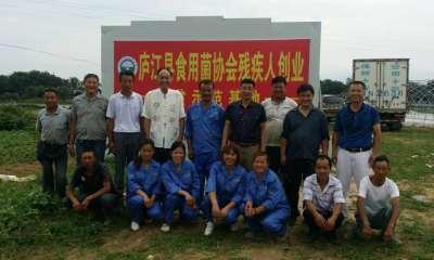 庐江县食用菌协会扶持残疾人创业工作合影