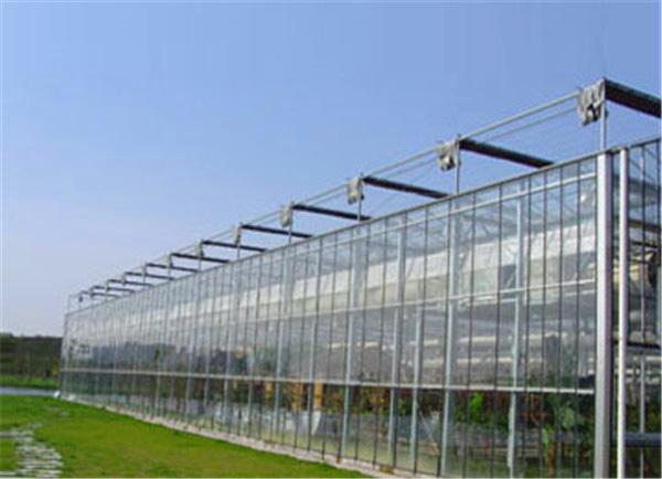 超值的玻璃温室大棚推荐-湖南温室建设