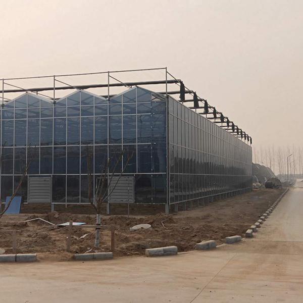 湖南阳光板玻璃温室