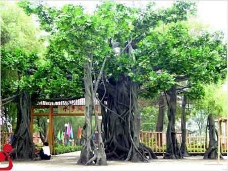 西安水泥榕树制作
