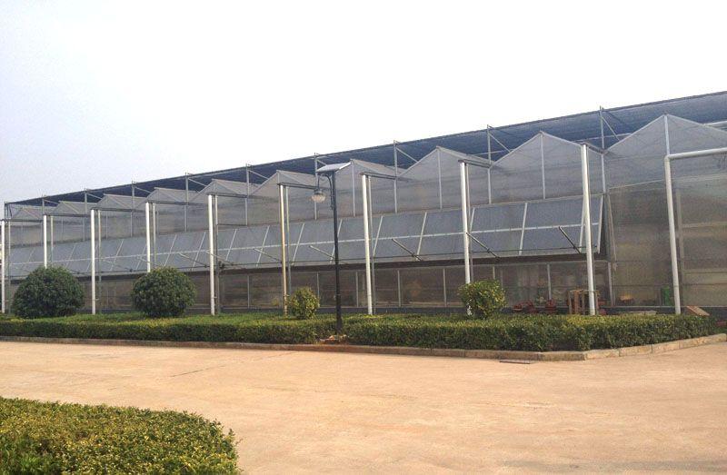 连栋温室造价是多少——连栋温室