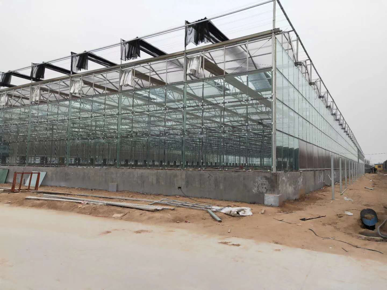 河南温室工程建设_温室大棚建造费用