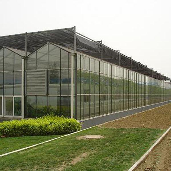 阳光板玻璃温室承建