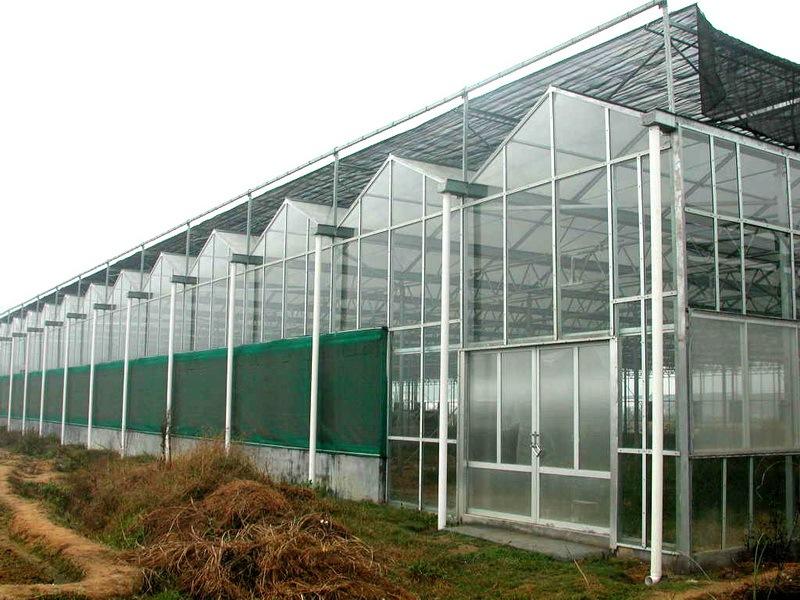 宁夏连栋玻璃温室