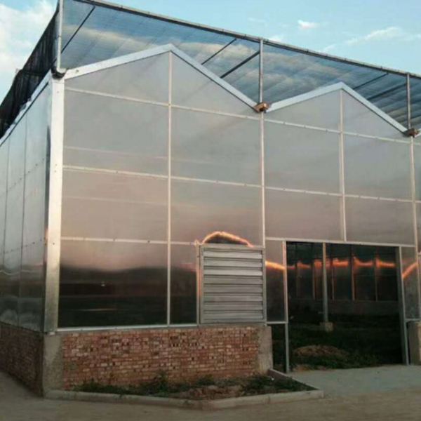 阳光板温室承建