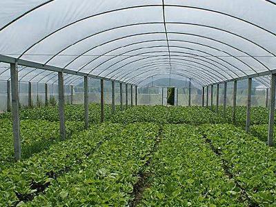 沂南县宏伟农业机械有限公司