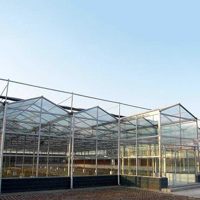 山東優良的玻璃溫室大棚供應_貴州玻璃溫室大棚安裝