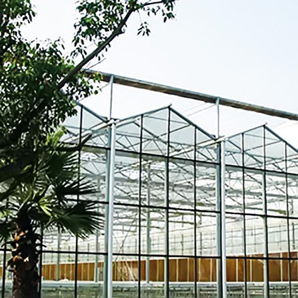 玻璃温室的优点有哪些?