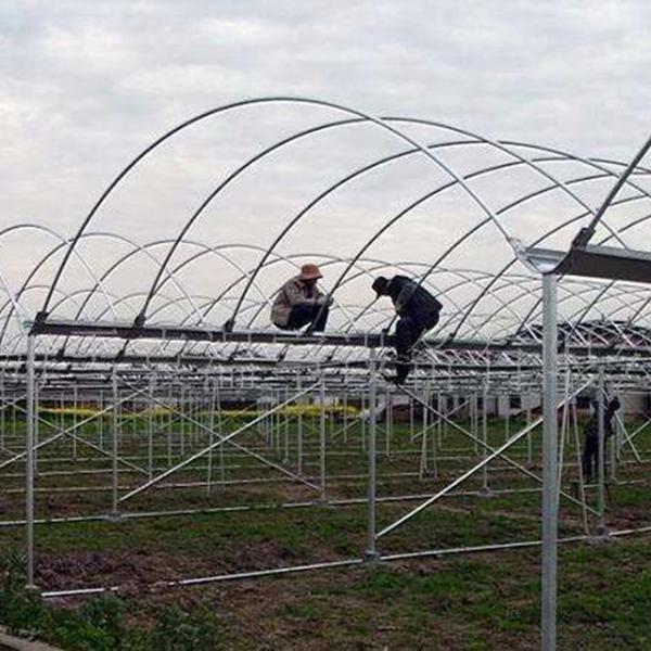 山东温室大棚骨架承建防雨措施和卷帘机安装注意