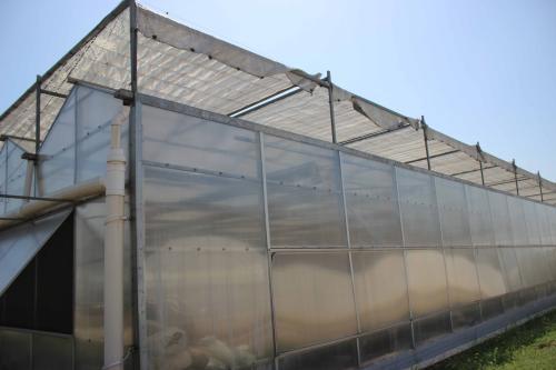 连栋阳光板智能温室大棚