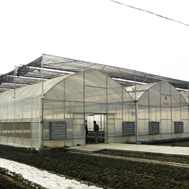 北京连栋温室种植基地