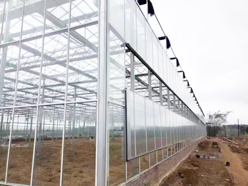 青州沐阳生态园林工程有限公司
