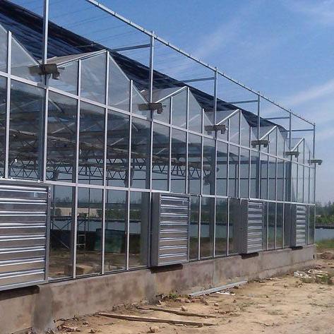 青州智能玻璃大棚建造案例