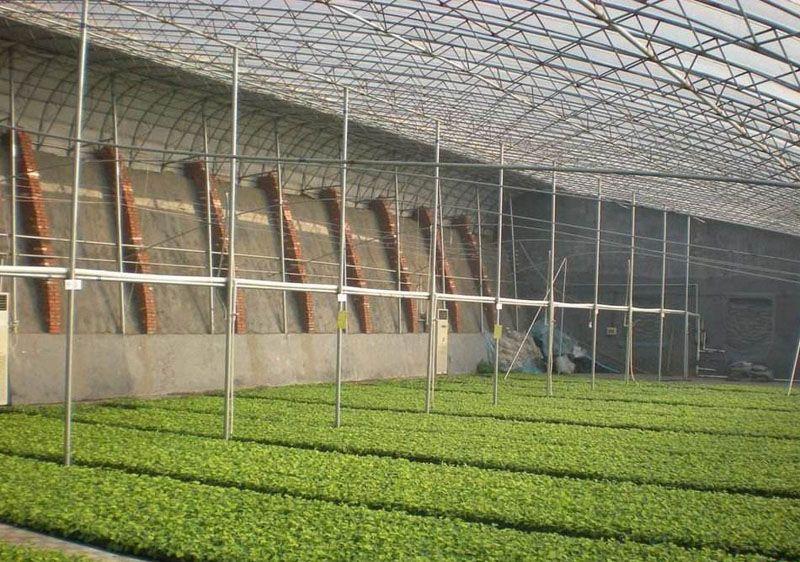 日光温室,高性价日光温室大棚推荐