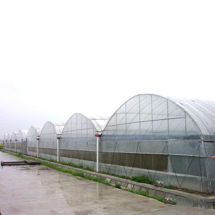 优良连栋温室选冠鑫温室工程-智能连栋温室价格