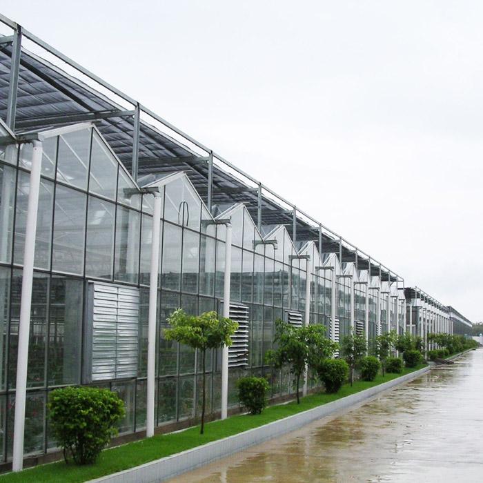 玻璃温室建造找恒丰温室,河南玻璃温室设计